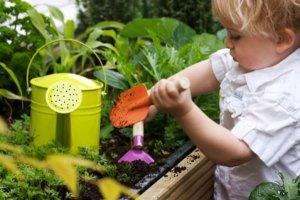 Atitudes ecológicas para crianças
