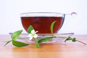 Florais podem ser usados na comida