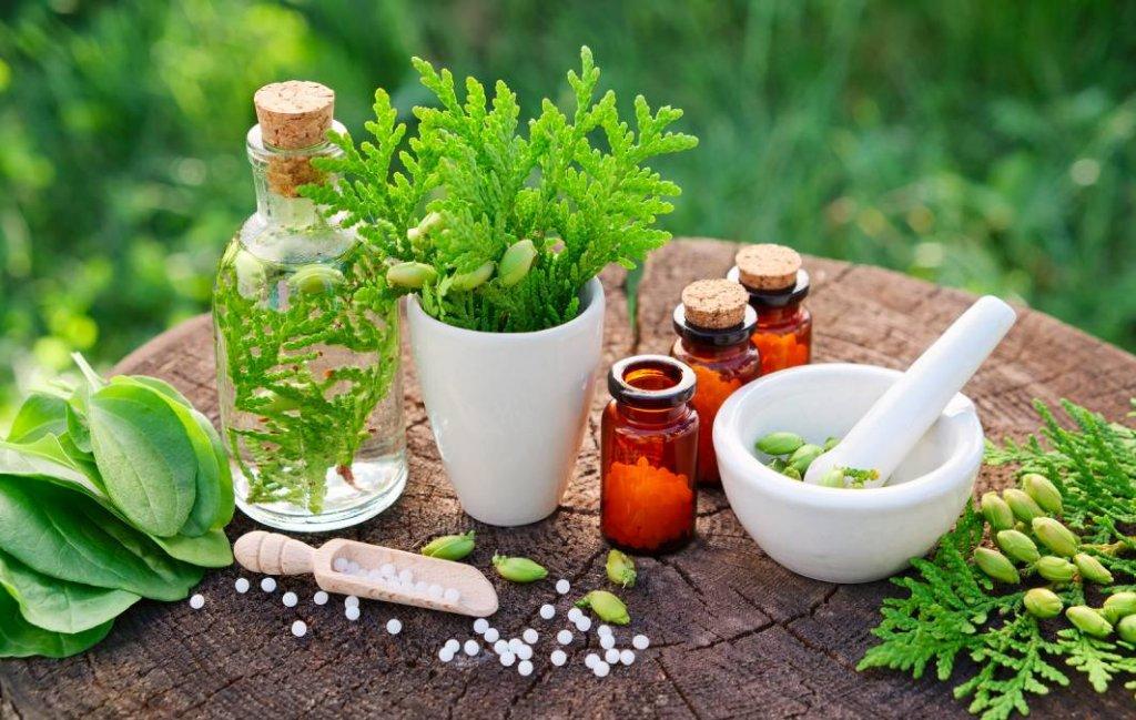 História e origem da Homeopatia