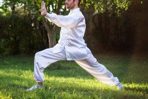 Artes marciais podem ser úteis na profissão