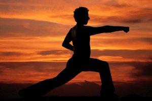 Artes marciais estimulam concentração no trabalho
