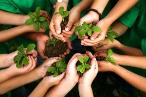 Como cuidar do meio ambiente?