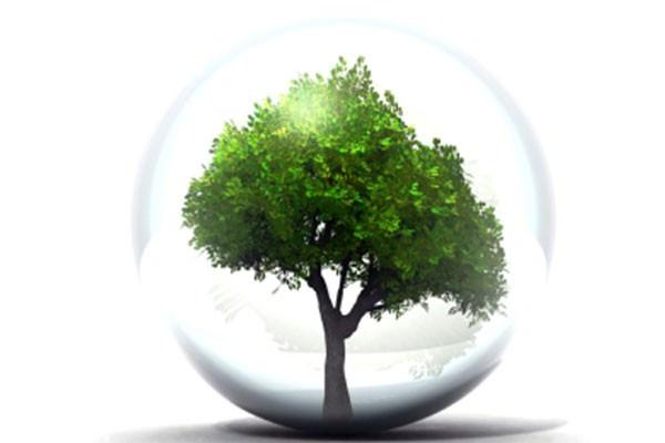 Ser sustentável não é difícil
