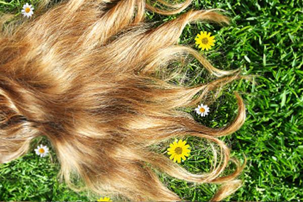 3 tipos de penteados simples