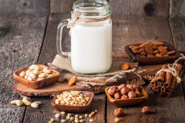 Quais alimentos sem lactose podem substituir o leite?