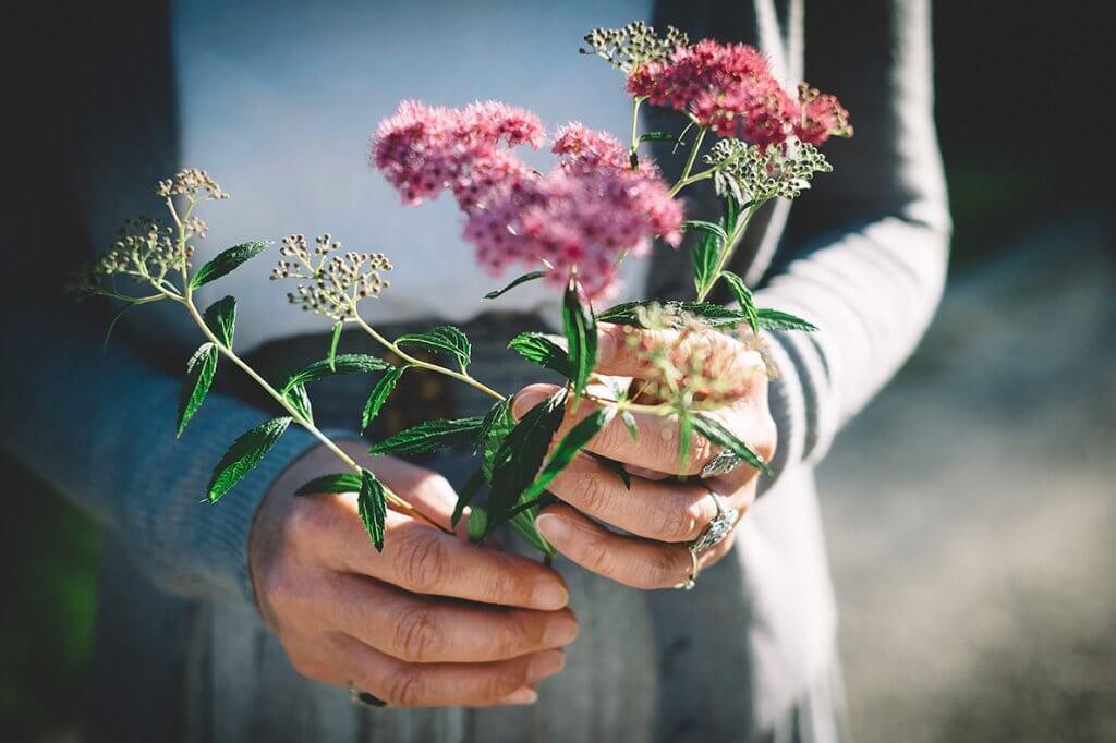 Lua nova em Touro: o que você está plantando para o futuro?