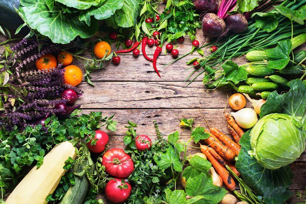 O que são PANC – Plantas Alimentícias Não Convencionais?