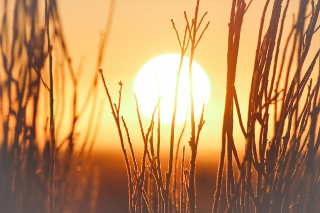 O que significa sonhar com sol?