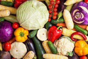 Agricultura biodinâmica: a saúde livre de agrotóxicos