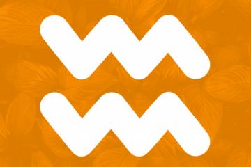 Características de Aquário: o que significa o signo
