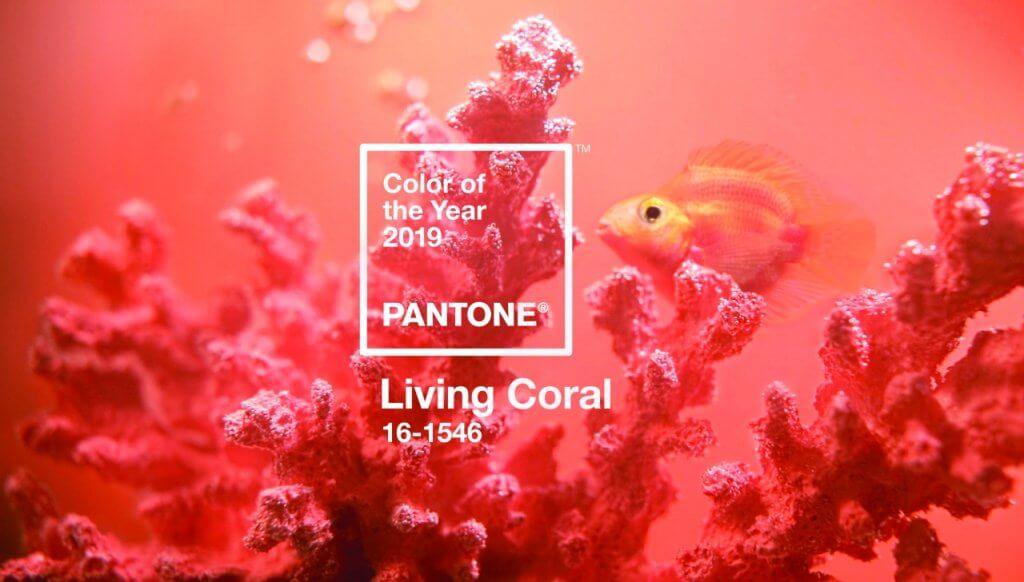 Pantone 2019: 6 dicas de como usar a cor Living Coral