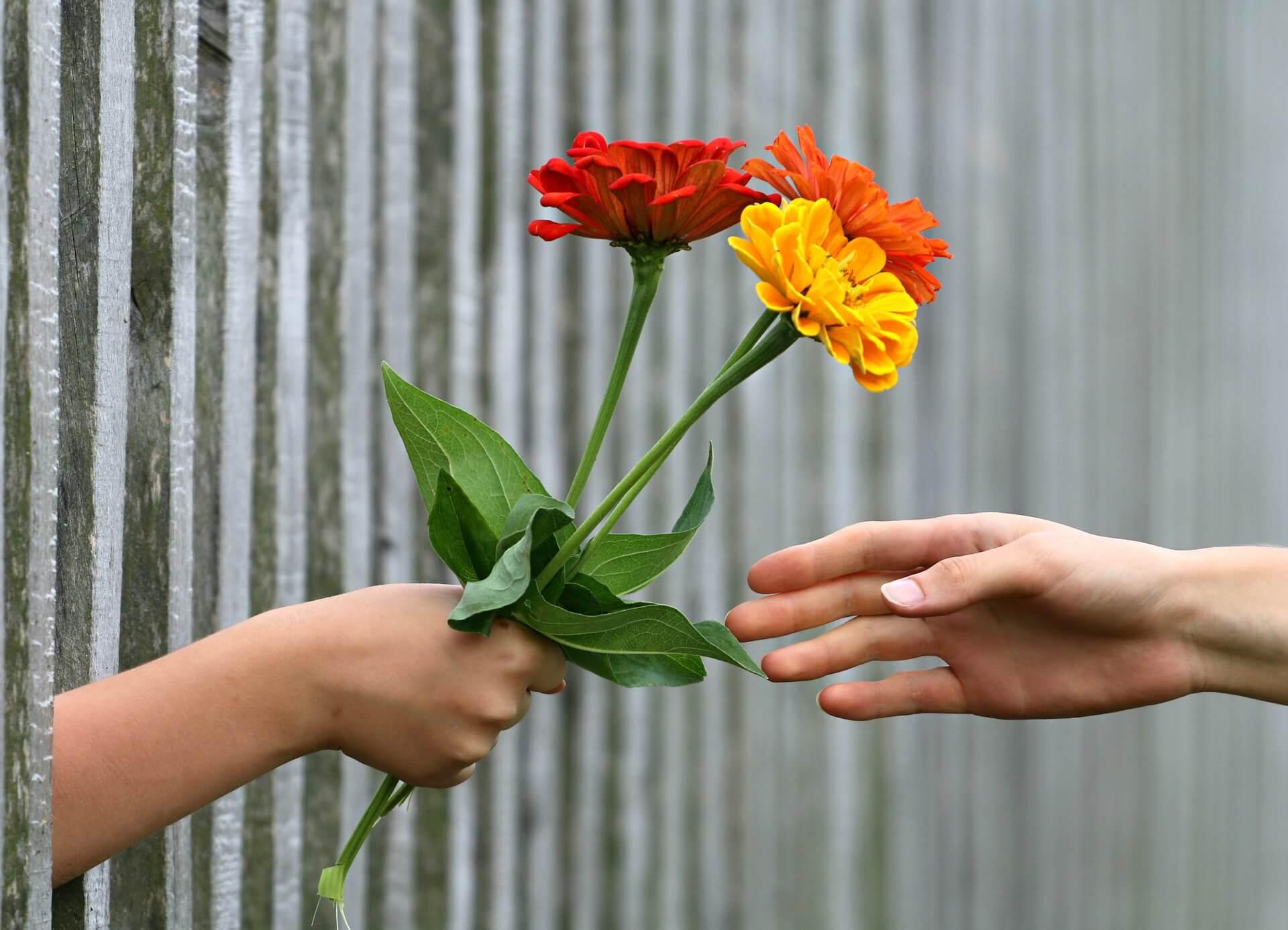 Comunicação não violenta ajuda a entender as necessidades das outras pessoas e as suas