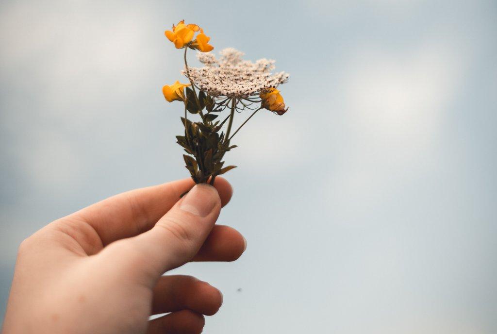 Ho'oponopono: como perdoar alguém de verdade