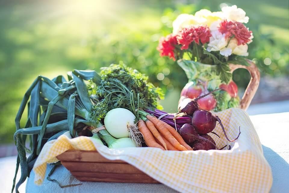 3 motivos para consumir produtos orgânicos