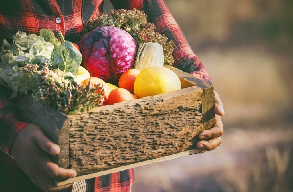 Como montar cardápio saudável com alimentos coringas