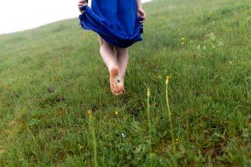 Mulheres que correm com os lobos: um reencontro com a sua natureza instintiva