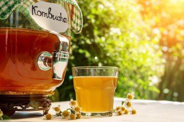 Kombucha: o que é e como fazer