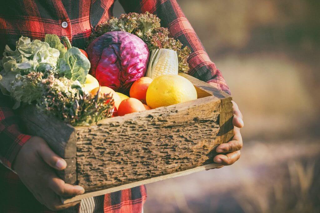 O que são alimentos orgânicos?