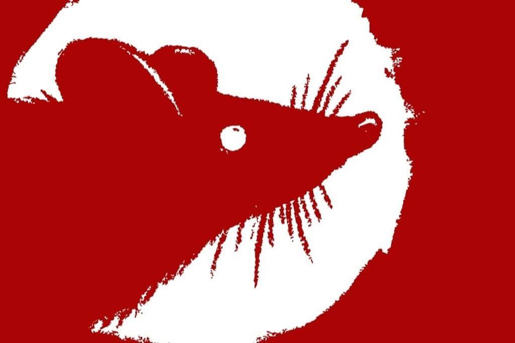 Ano Novo Chinês 2020: o ano do Rato