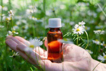 Como usar florais para ansiedade, medo e solidão
