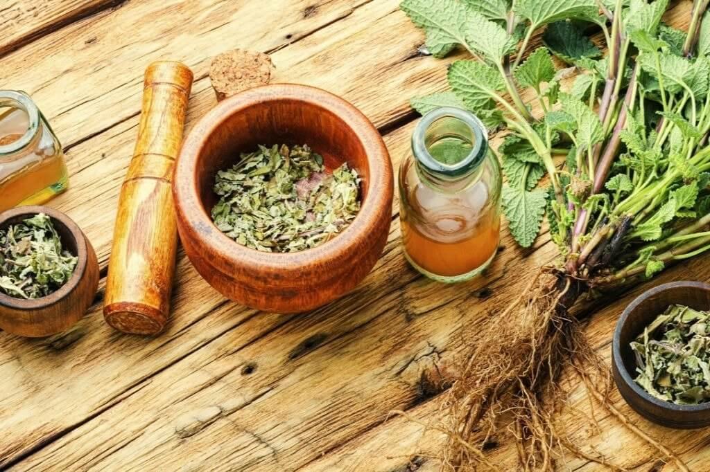 Ervas são remédio caseiro para insônia