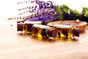 Como os óleos essenciais são absorvidos pelo nosso corpo?