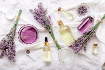 Como amenizar mofo com óleos essenciais